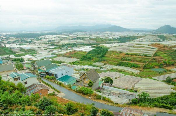 Một khu vực làm nông nghiệp trong nhà kính ở Đà Lạt