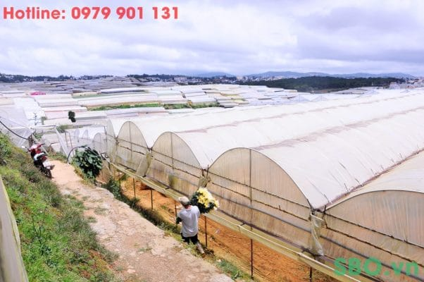 nhà kính nông nghiệp
