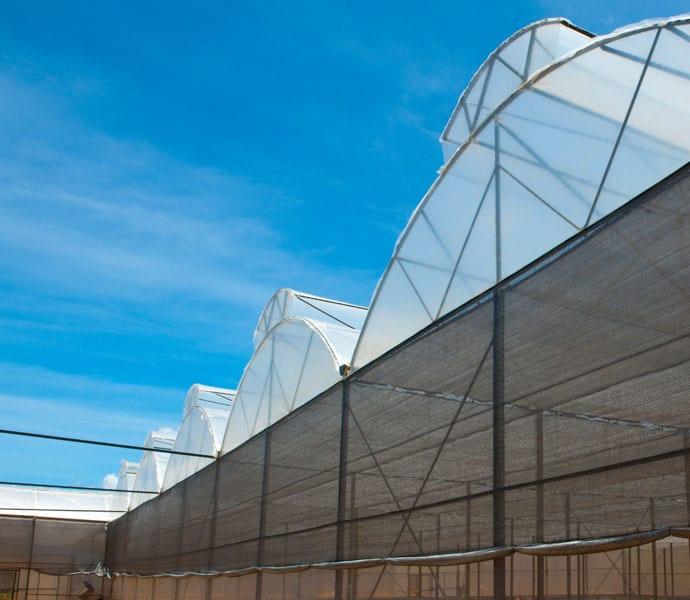 Mô hình nhà kính mái hở hai bên