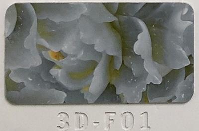 3D-F01