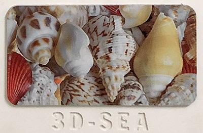 3D-SEA