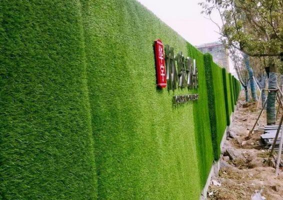 cỏ nhân tạo dán tường đẹp