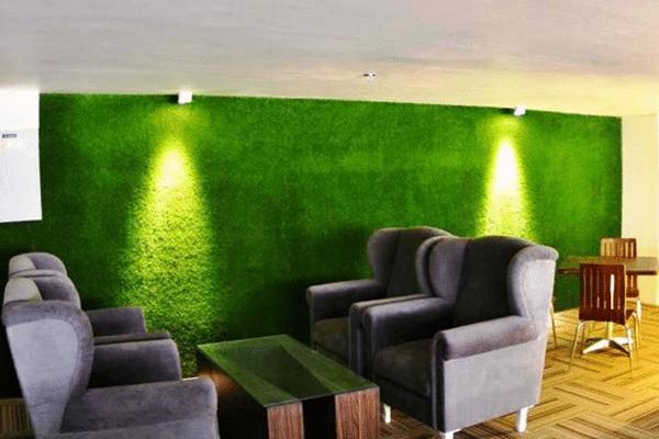 cỏ nhân tạo trong quán cà phê