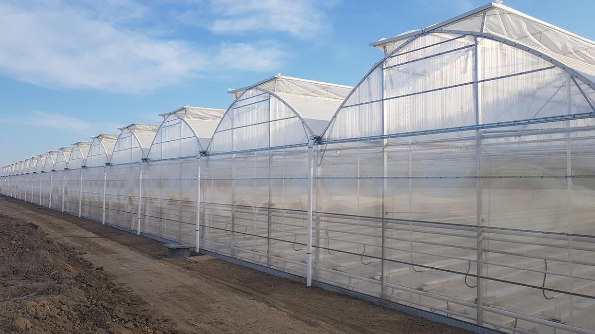 Nhà lưới trồng rau nông nghiệp phủ lưới côn trùng israel